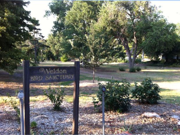 weldon bird sanctuary2
