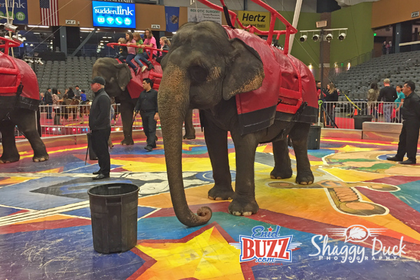 Circus In Enid, OK