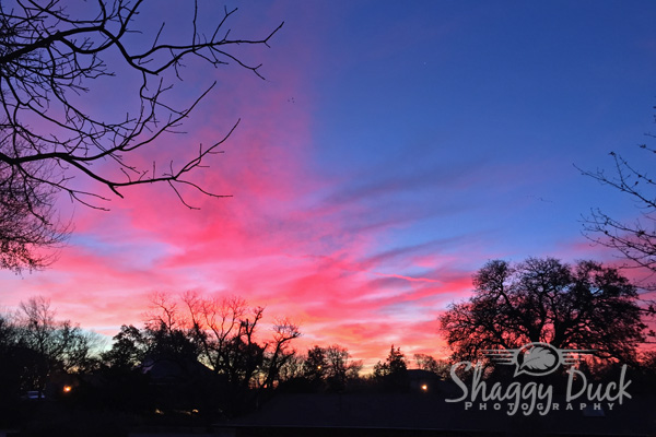sunrise-pink
