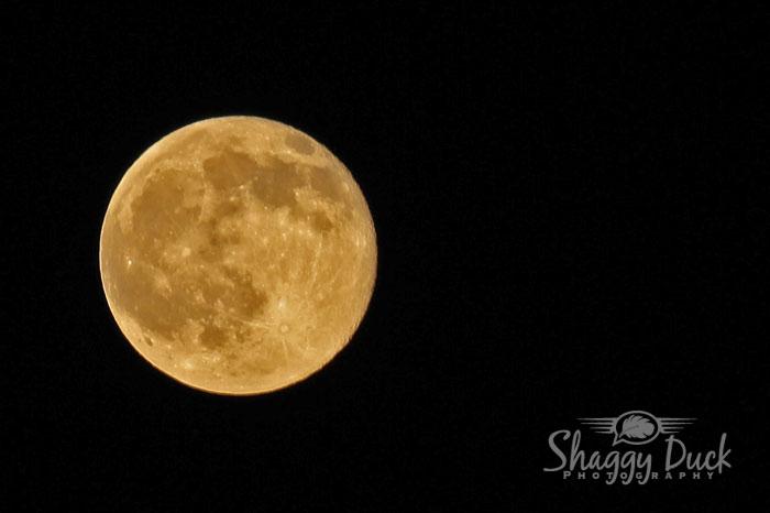 full-strawberry-moon