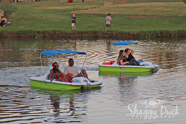 Paddle boat rental business plan