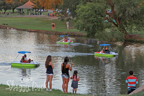 paddle-boats-enid