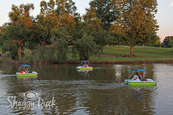 pedal boat rental business plan