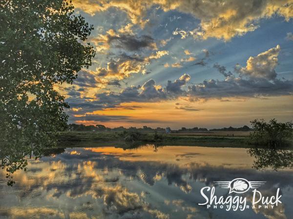 sunrise-pond